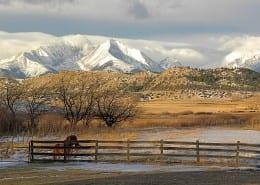 Big Timber Ranch