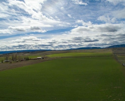Irrigated Farm Land Auction