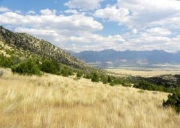 Hogback Mountain Ranch