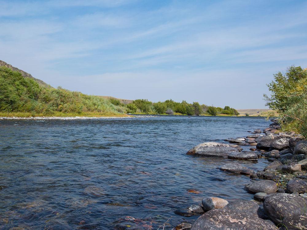 Madison River Auction