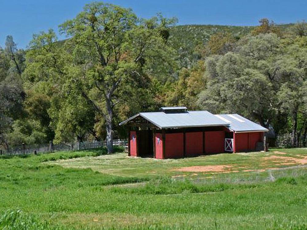 California Land Auctions