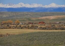 Rimfire Ranch Auction