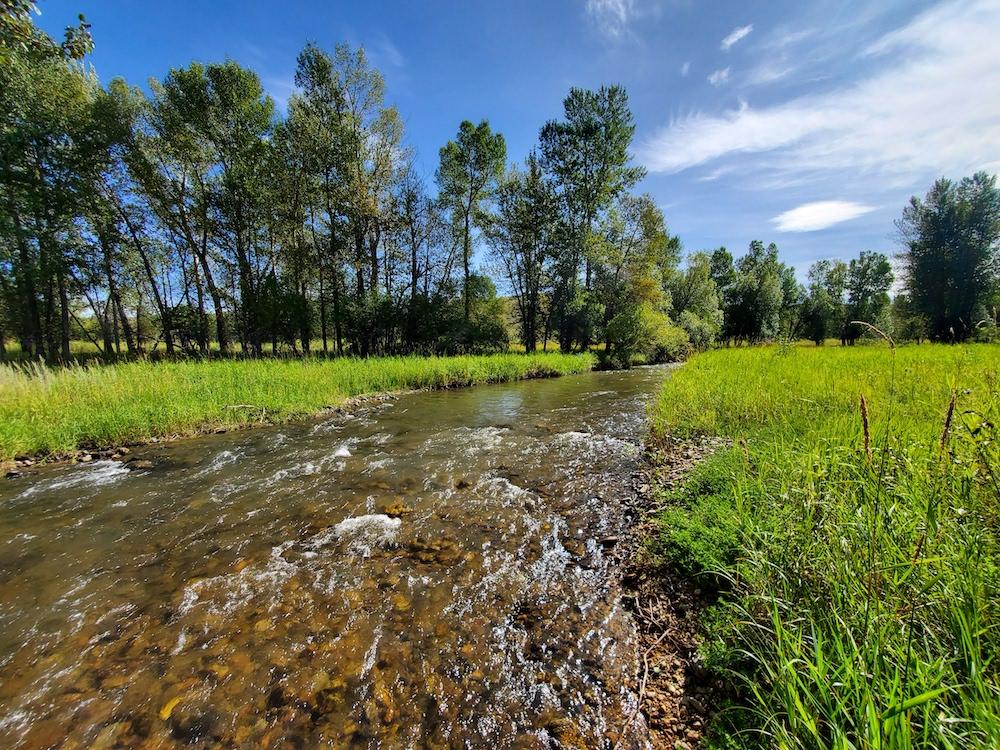 Montana Irrigated Land Auction