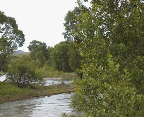 Belt Creek Land Auction